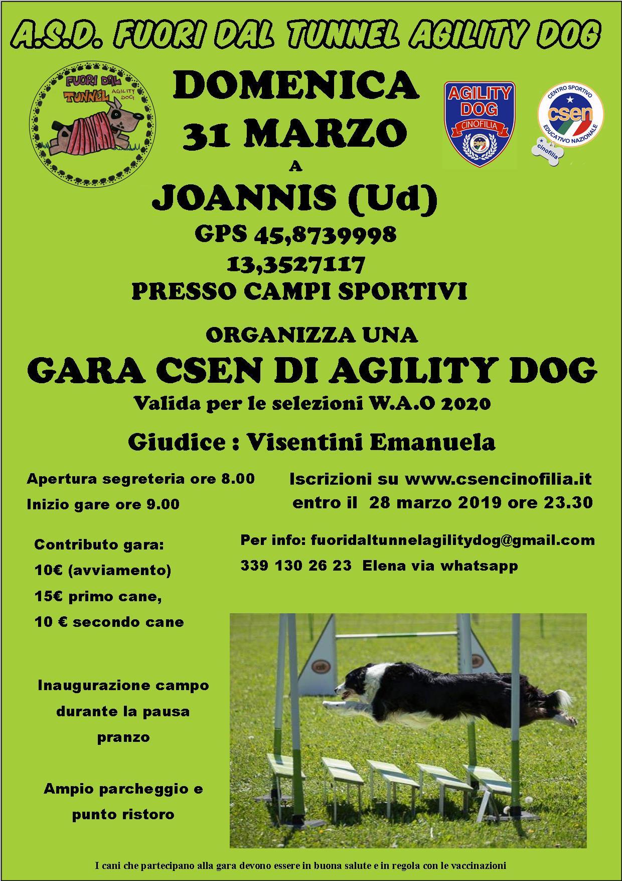 Calendario Vaccinale Fvg.Gara Agility 31 Marzo 2019 Joannis Ud Csen Friuli